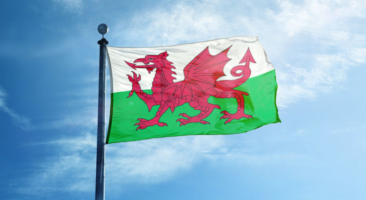IT-Pro Support | IT Support Chester | Welsh flag